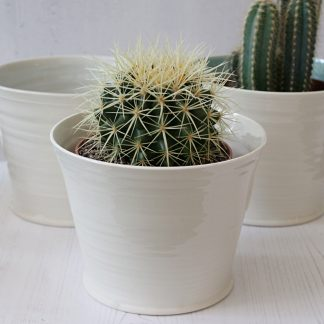 Hand thrown porcelain plant pot for cacti