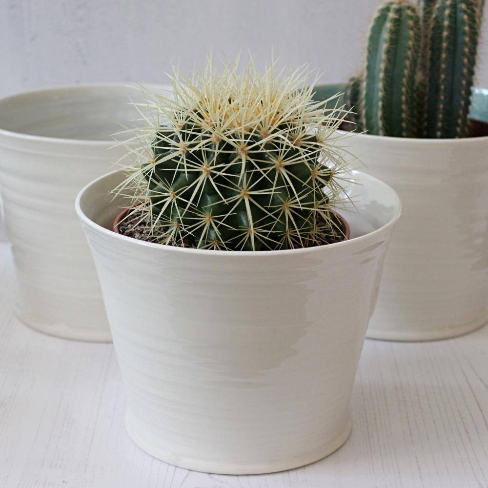 Hand thrown porcelain plant pot for cacti