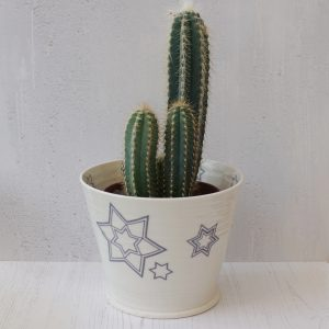 Metropolis Star indoor plant pot