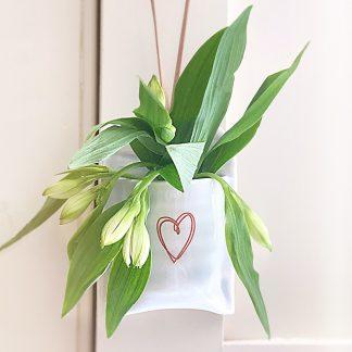 bud vase hanging
